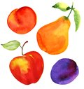 Set Of Fruits. Apple, Pear, Plum And Apricot Stock Photos - 57153543