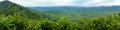 Tropical Forest Stock Photo - 57172500