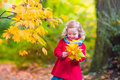Little Girl Playing In Beautiful Autumn Park Royalty Free Stock Image - 57179086