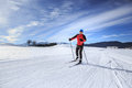 Cross-country Skiing Royalty Free Stock Photography - 57179277