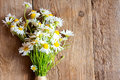 Daisies Bouquet Royalty Free Stock Images - 57187969