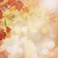 Abstract Autumnal Backgrounds Royalty Free Stock Images - 57197489