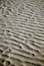 Sand Ripples Royalty Free Stock Photography - 5725837