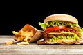 Delicious Hamburger And Fries Royalty Free Stock Photography - 57239217