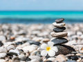 Zen Balanced Stones Stack With Plumeria Flower Royalty Free Stock Image - 57261046