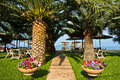 Entrance To The Beach Through Palm Trees Alley, Sithonia Stock Photography - 57350922
