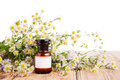 Herbal Medicine Concept - Bottle With Camomile On Wooden Table Stock Photos - 57354593