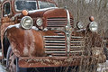 A Rusty Old Dodge Truck Lies Abandoned Stock Images - 57369274