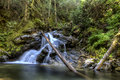 Lush Snow Creek Falls. Royalty Free Stock Photography - 57379157