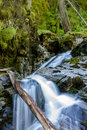 Part Of Snow Creek Falls. Royalty Free Stock Photo - 57379225