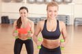 Pair Of Women Doing Weights Fitness Stock Photos - 57396133