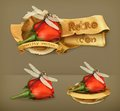 Dragonfly And Rose Vector Icons Royalty Free Stock Photo - 57417505