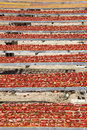 Amazing Infinite Arrangement Surface Of Red Dried Tomatoes Royalty Free Stock Images - 57458939