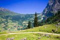 Hiking Near Grindelwald In Switzerland Stock Photography - 5752002