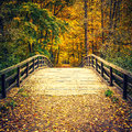 Bridge In Autumn Forest Royalty Free Stock Images - 57510719