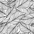 Vector Hand Drawn Doodle Leaves Seamless Pattern. Abstract Autumn  Royalty Free Stock Image - 57601356