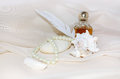 Vintage Perfume Bottle With Pearls, Shellfish, White Sea Stone And Feather Royalty Free Stock Photo - 57618185