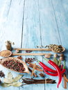 Different Spices. Royalty Free Stock Photos - 57655108