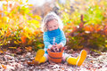 Little Girl Picking Acorns In Autumn Park Stock Images - 57677594