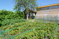 View Of The Seasonal Dacha In The Summer Royalty Free Stock Photo - 57697875