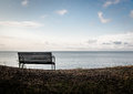 Bench On A Curonian Lagoon Shore Stock Images - 57738374