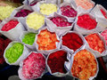 Colourful Carnations In Flower Market, Bangkok, Thailand Stock Photography - 57911092