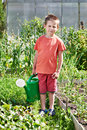 Little Boy With Watering Can In Vegetable Garden Stock Photo - 57934990