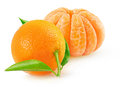 Tangerines Stock Image - 57982111