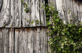 Old Planks Stock Photography - 58059472