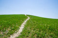 A Path On The Green Grass Royalty Free Stock Images - 58129749