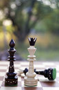 White King And Black Queen Chess Pieces. Royalty Free Stock Photography - 58136477