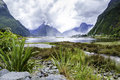 Milford Sound, South Island, New Zealand Stock Photo - 58183700