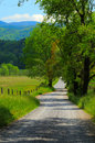 Country Road Portrait Stock Photography - 5820952