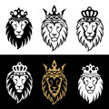 Lion2 Royalty Free Stock Photography - 58216097