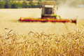 Harvest Time Royalty Free Stock Images - 58257689