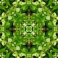 Green Leaves Tile Pattern Background 5 Stock Images - 5831244