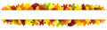 Colorful Autumn Leaves Banner Royalty Free Stock Photo - 58304685
