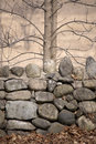 Rock Wall With Trees In Autumn Royalty Free Stock Images - 58318029