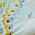 Butterfly Wing Royalty Free Stock Images - 58333629