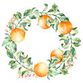 Vector Round Frame Of Watercolor Orange And Flowers. Watercolor Illustration Wreath Of Mandarin And Leaves Stock Photo - 58338910