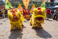 Ho Chi Minh, Vietnam - February 18, 2015 Lion Dancing To Celebrate Lunar New Year At Thien Hau Pagoda Stock Photos - 58340833