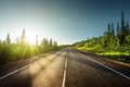 Road In Summer Forest Royalty Free Stock Photography - 58376307