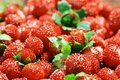 Detail  Of Red Wild Strawberry Royalty Free Stock Images - 5843159