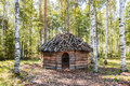Timber Made Hut In Birch Forest Royalty Free Stock Image - 58485506