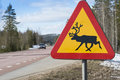 Reindeer Warning Sign Sweden Royalty Free Stock Photo - 58573805