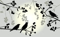 Birds On The Branch During Summer Days - Vector Illustration Stock Photo - 58668690