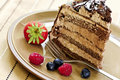 Slice Of Chocolate Cake Royalty Free Stock Images - 5871849