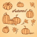 Pattern With Pumpkins Royalty Free Stock Images - 58709929