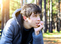Young Man In The Autumn Park Royalty Free Stock Images - 58719099