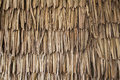 Dried Palm Texture Stock Photography - 58771372